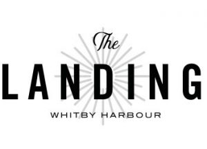 TheLanding-Logo - TheLanding Logo 300x216