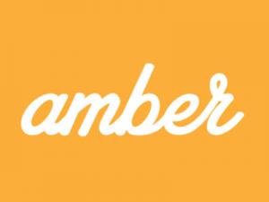 amberlogo - amberlogo 300x225