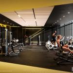 Zorra-Gym