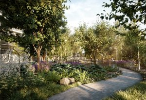 8188Outdoor Amenity_Garden Pathway - 8188Outdoor Amenity Garden Pathway 300x206