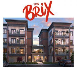 The Brix - TheBrixx 300x264